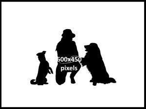 600x450v1