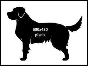 600x450v2