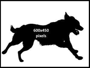 600x450v4